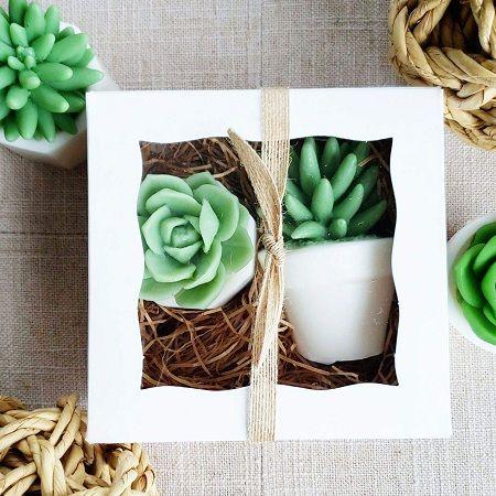 Succulent Handmade SOAP Gift Set